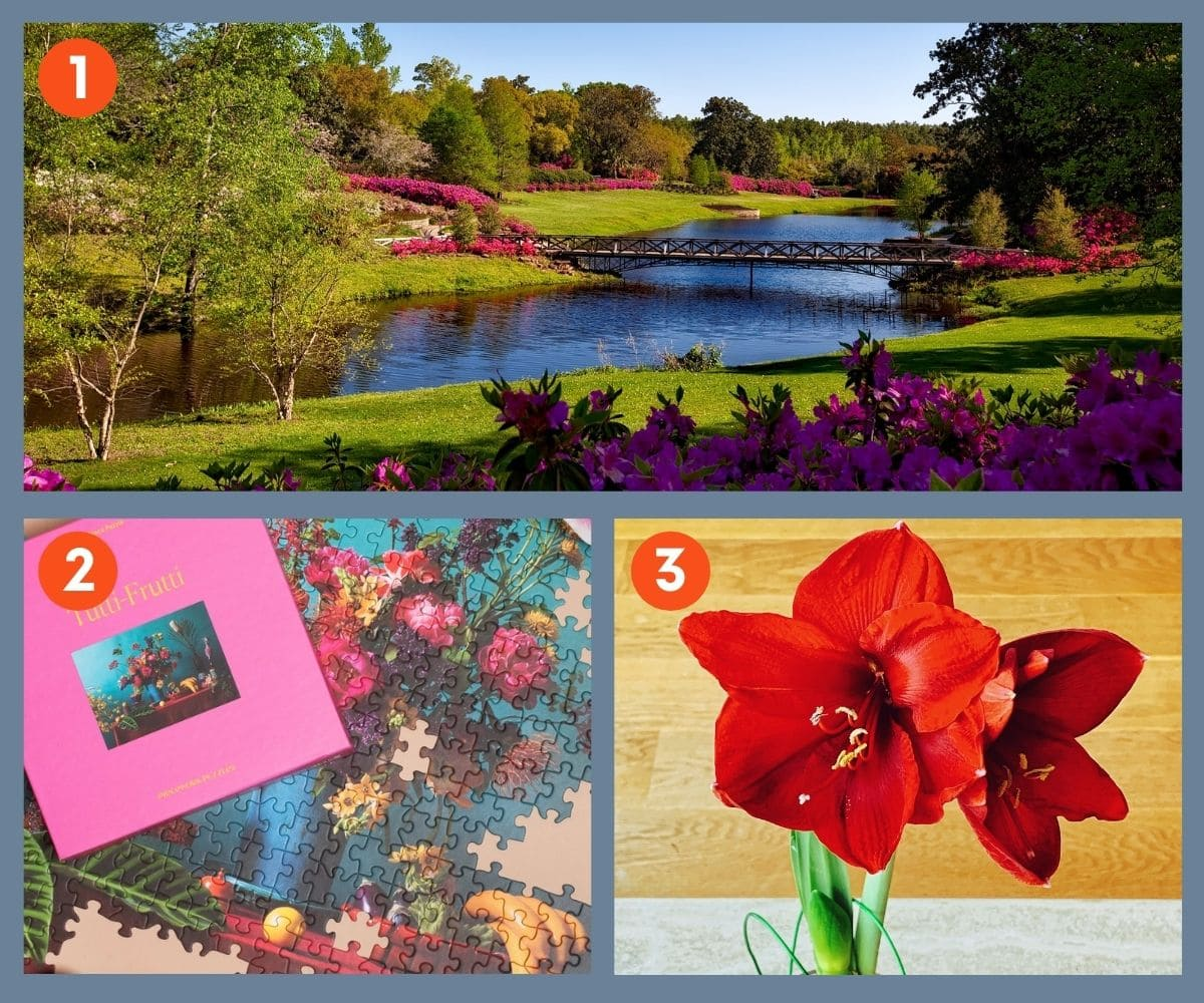 Collage of three gift ideas for plant lovers including a colorful puzzle and flowers.