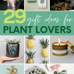 "Collage of gift ideas for people who love plants. A text overlay reads, ""29 Gift Ideas for Plant Lovers."""