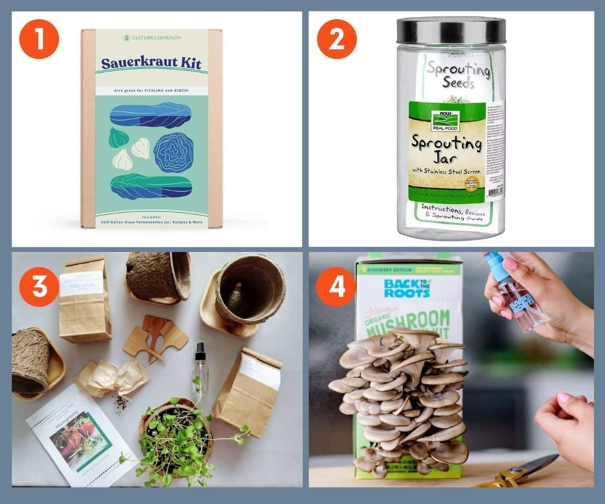 Collage of four food kits including sauerkraut kit and grow your own mushrooms kit.