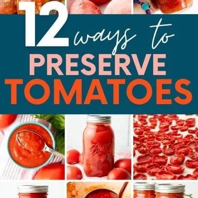 """Collage showing nine different methods for preserving tomatoes for winter. A text overlay reads, """"12 Ways to Preserve Tomatoes."""""""