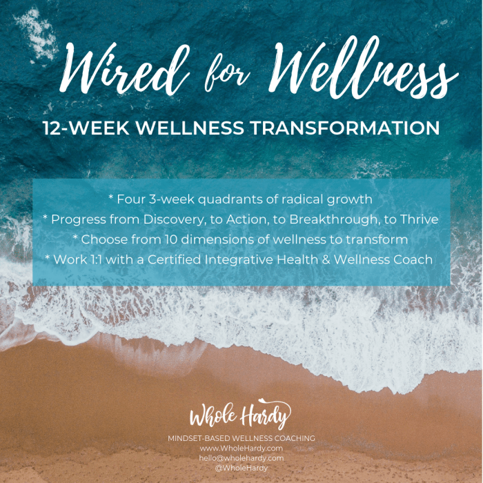 WIRED FOR WELLNESS 12-WEEK WELLNESS TRANSFORMATION THROUGH 1_1 COACHING-3