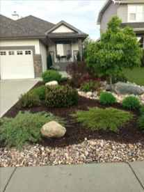08 affordable low maintenance front yard landscaping ideas