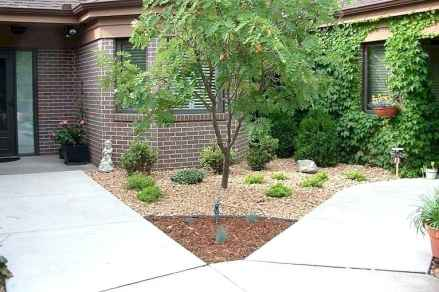 35 affordable low maintenance front yard landscaping ideas