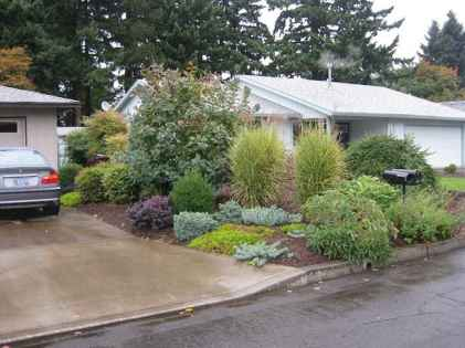 38 affordable low maintenance front yard landscaping ideas