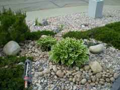 45 affordable low maintenance front yard landscaping ideas