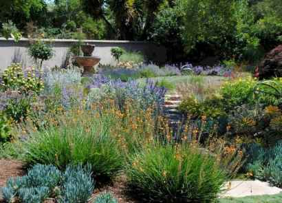 64 affordable low maintenance front yard landscaping ideas