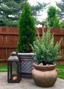 67 affordable low maintenance front yard landscaping ideas