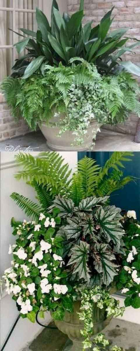 15 beautiful summer container garden flowers ideas