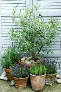 33 beautiful front yard cottage garden landscaping ideas