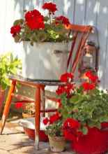42 fantastic cottage garden ideas to create cozy private spot