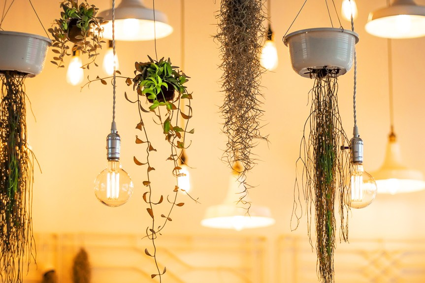 Design It Yourself: The Beginners Guide to Lighting Design