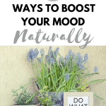 9 ways to boost your mood naturally