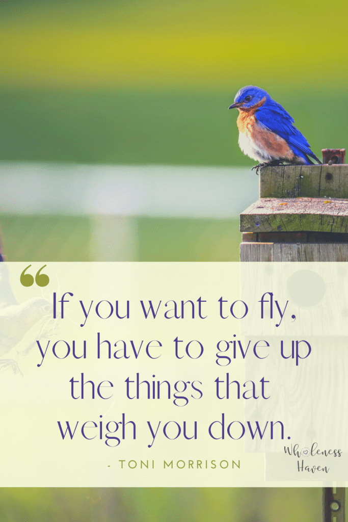 If you want to fly, you have to give up the things that weigh you down.