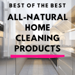 best home cleaning products