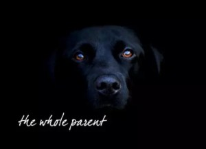 Read more about the article Followed by the Black Dog (of depression)