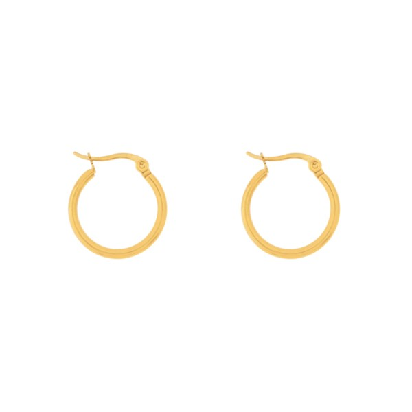 Earrings hoops round basic small gold
