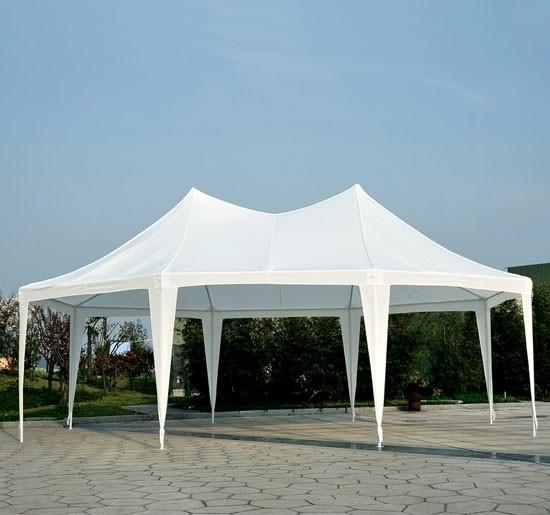 22 X 16 Party Tent Gazebo Canopy