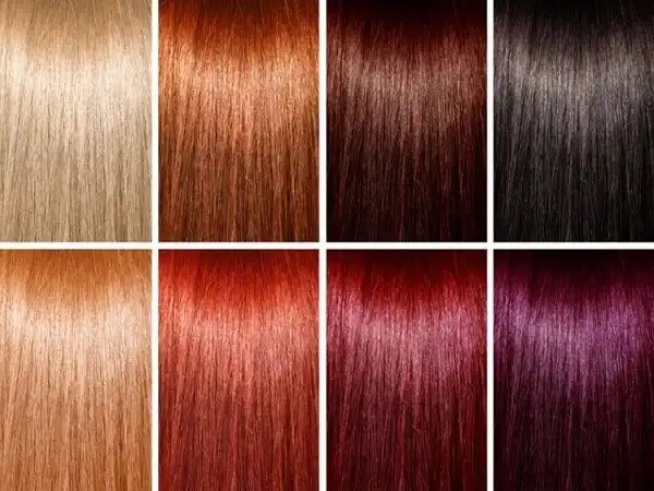 Ion Demi Permanent Hair Color Instructions Zieview
