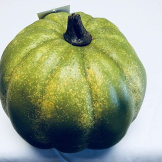 Green Foam Pumpkin