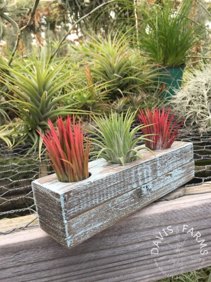 Handcrafted Wooden Planter, SMALL