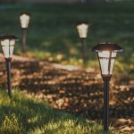 11 Best Solar Pathway Lights 2020 Top Reviews