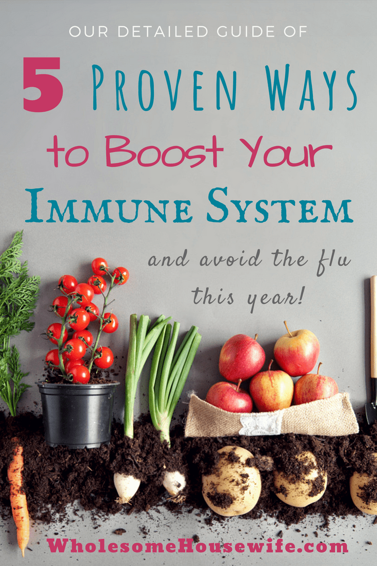 5 Proven Ways to Boost Your Immune System