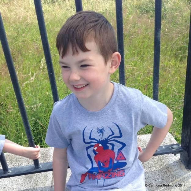 Spiderman T Shirt - Caitriona Redmond