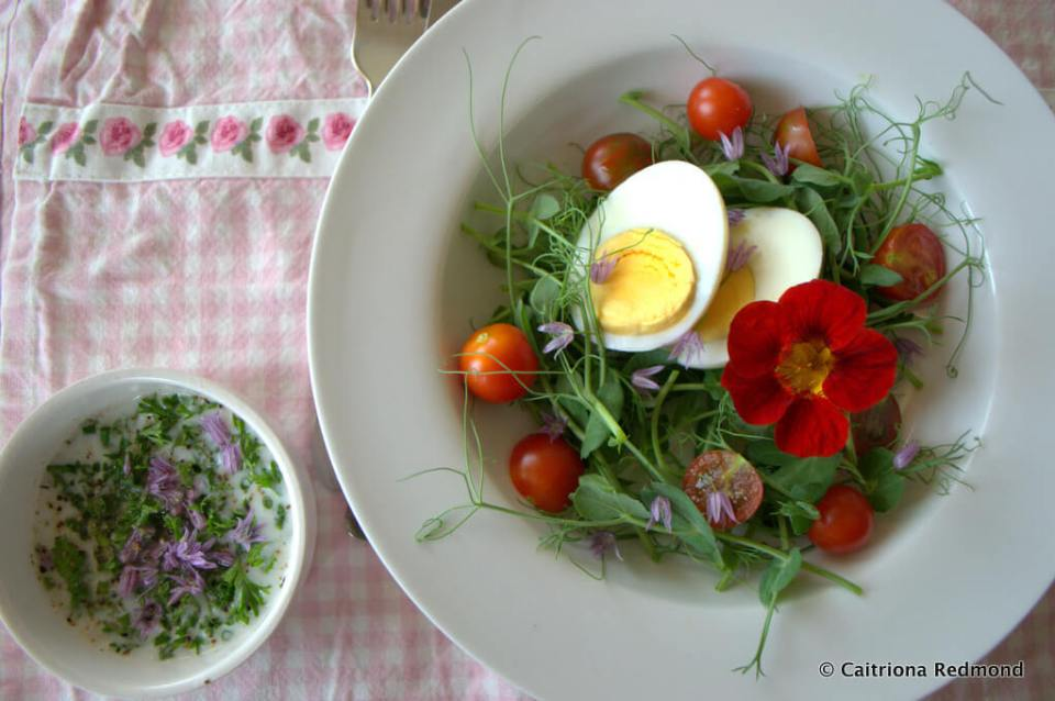 Pea Shoot Salad - Caitriona Redmond