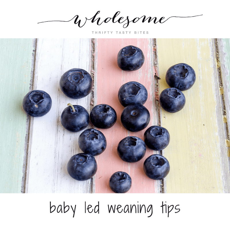 My Baby Led Weaning Tips