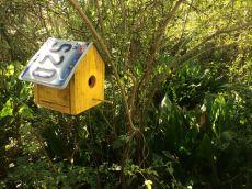 Cute idea for a birdhouse