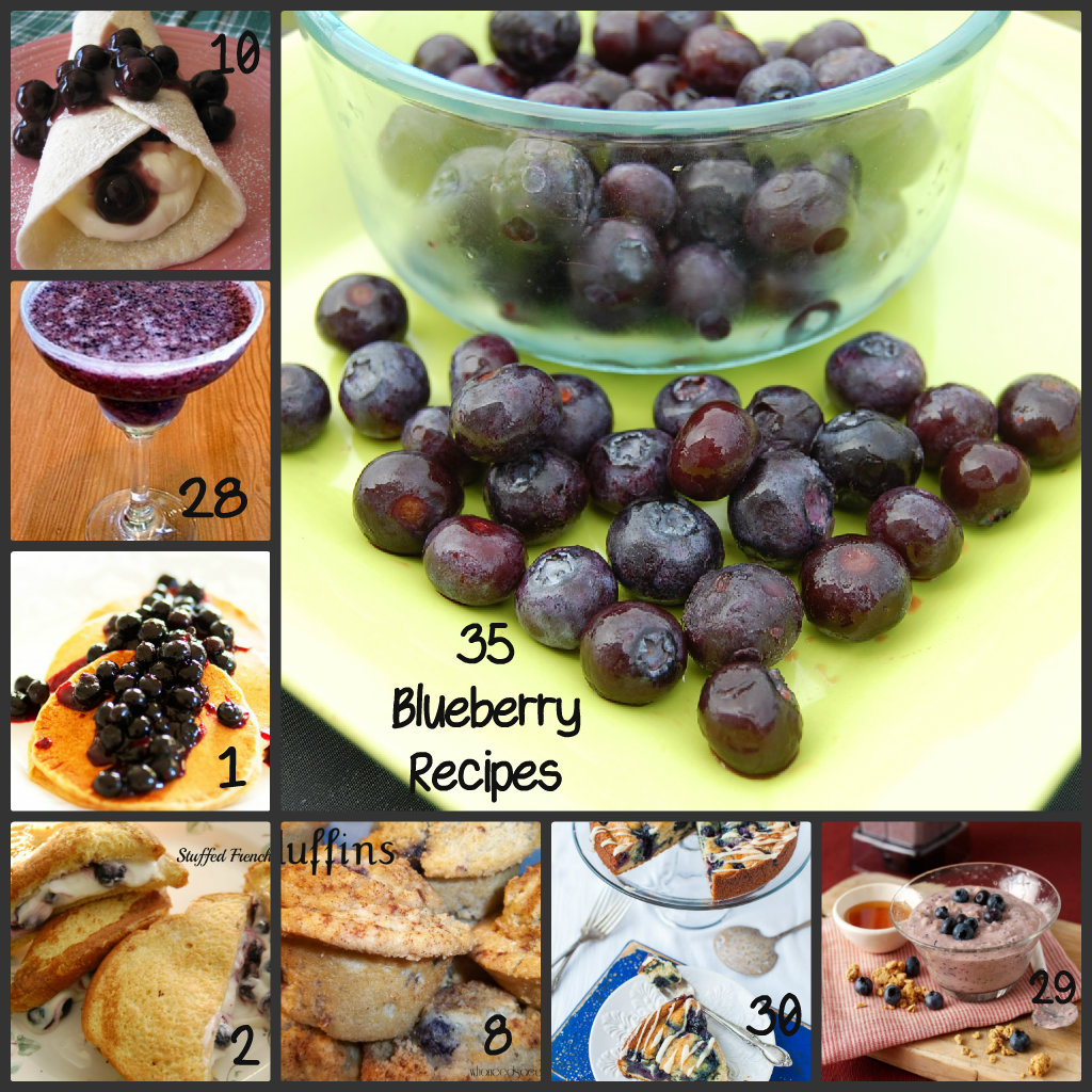 From baking to desserts to breakfast favorites, we have compiled 35 Blueberry Recipes. Great for berry season, surely you'll find something new to try!