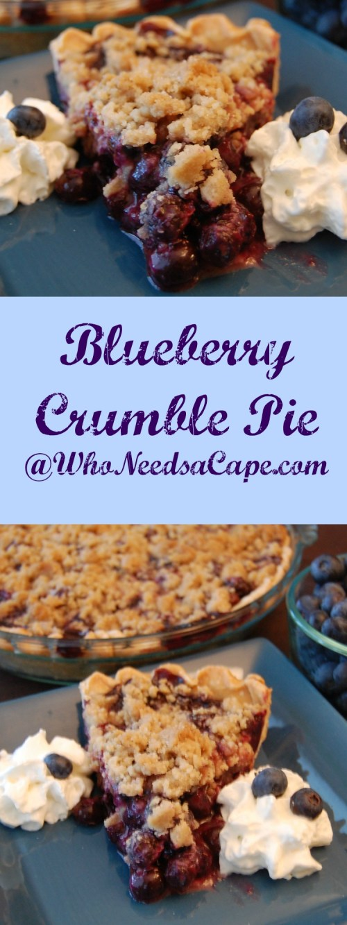 If you love blueberries you'll absolutely love homemade Blueberry Crumble Pie. Harvest blueberries and enjoy this amazing dessert made with fresh fruit.