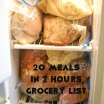 20 Meals in 2 Hours Shopping List
