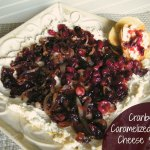 Cranberry & Caramelized Onion Cheese Spread