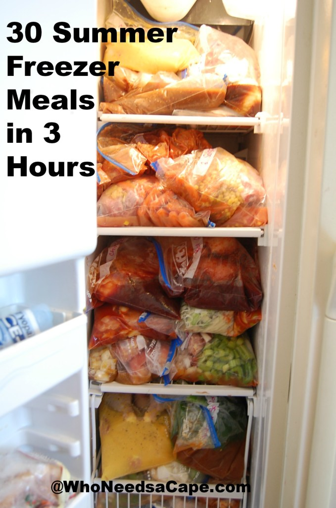 You need to make 30 Summer Freezer Meals in 3 hours! Prep, bag, freeze & slow cook your way to easy mealtimes! Aren't crockpots the best?
