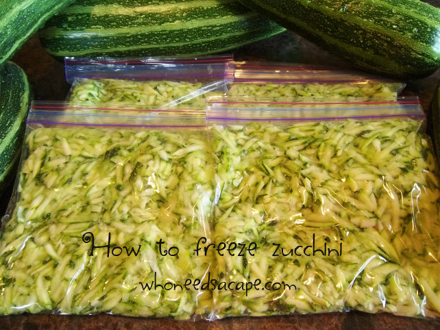 Have an abundance of garden fresh zucchini? Then you need to know how to freeze zucchini with these simple steps for freezing this amazing vegetable.