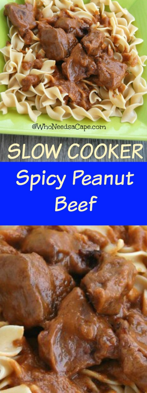Spicy Peanut Beef is a fantastic SLOW COOKER meal - Perfect for a Freezer Meal (and it tastes amazing!)