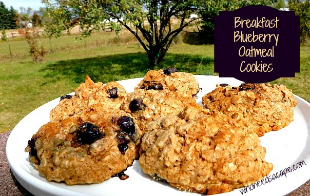 Need a yummy breakfast idea? Try these Breakfast Blueberry Oatmeal Cookies! They are like dessert for breakfast. They are nutritious and good for you too!