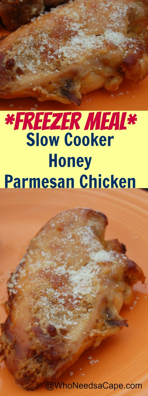 Slow Cooker Honey Parmesan Chicken Perfect Freezer Meal! Tasty and Easy!