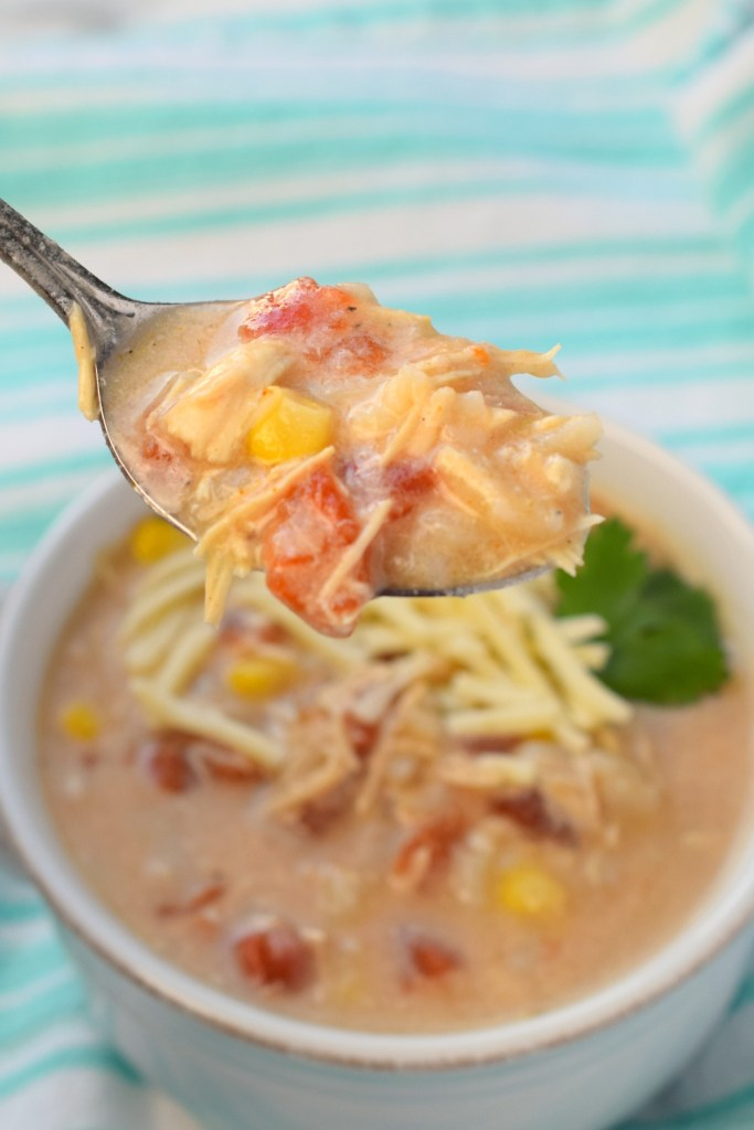 Slow Cooker Southwest Chicken Soup is a comforting meal that feeds a crowd. Grab your crockpot, this is an easy to make flavor-packed dinner you'll love.