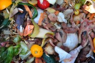 Solid Waste, Here's A Guide To Get Rid Of