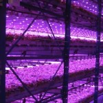 vertical farms