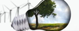 Enviro-Friendly Business Ideas