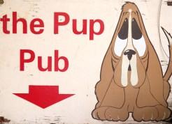The_Pup_Pub