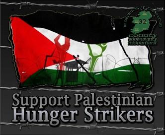 Hunger-strike-Palestinian-03.jpg