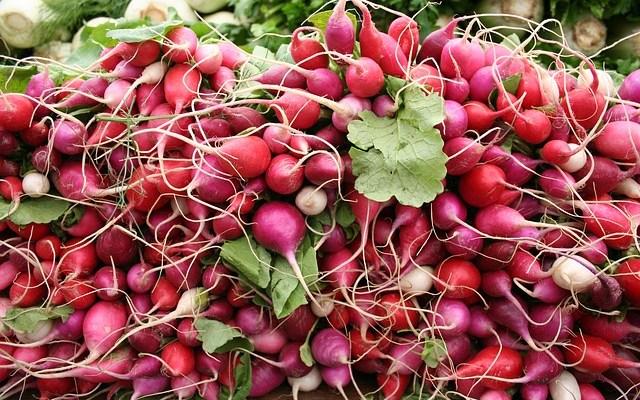 5863f19675eb05fa_640_veggies