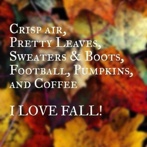 Marvelous Cuddly Sweaters, Hot Drinks, Crisp Airu2026 It All Makes Me So Happy. Here Are  Some Fun Fall Quotes To Go Along With Your Autumn State Of Mind.