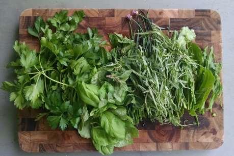 All 7 herbs