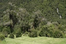 Valle de río Cochámo