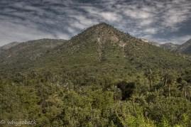 Parque Nacional La Campanaharp